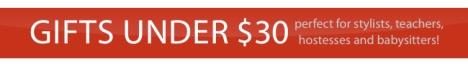 Gift Ideas Under $30!